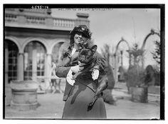 1910 French Bulldog photo 1910_Frenchie_MrsMarthaHaslam_Noise.jpg