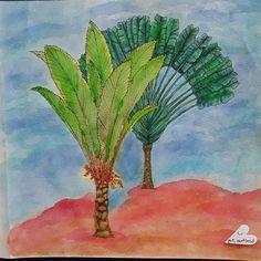 My 1st from Island Escape coloring book & my 1st watercolor! #jadegedeon #islandescapecoloringbook  #peerlesswatercolors #derwentinktense #coloringforadults #adultcoloringbook #lovetocolor