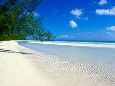 Bahamas, Taino Beach xxx