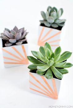 Copper and White Succulent Planters- DIY