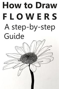 A drawing of a common daisy flower with pen and ink. Step-by-step, easy guide for drawing flowers with pens. Many drawings and sketches examples. art with pen Flower Drawing Tutorials, Flower Art Drawing, Flower Sketches, Art Tutorials, Painting & Drawing, Watercolor Paintings, Flower Drawings, Watercolor Trees, Watercolor Artists