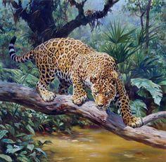 By Sergio Budicin Beautiful Cats, Animals Beautiful, Cute Animals, Big Cats Art, Cat Art, Jaguar Habitat, Jaguar Animal, Cat Drawing, Wildlife Art