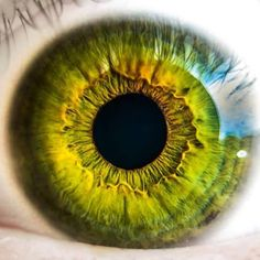 Browse through our broad collection of Eye Photos - colorful, happy, sad eyes! Pictures of eyes from humans, animals. Great stock photos of eyes without registration. Gorgeous Eyes, Pretty Eyes, Cool Eyes, Eye Close Up, Aesthetic Eyes, Photos Of Eyes, Photo Portrait, Human Eye, Eye Photography