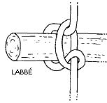 Knoten und Seile: Strickleiter - Zzzebra, das Web-Magazin für Kinder | Labbé Verlag