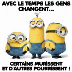 Les minions Humor Minion, Minions Quotes, Funny Minion, Funny Facts, Funny Jokes, Fun Funny, Minion Talk, Funny Christmas Games, Funny Good Morning Memes