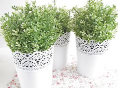 """""""Your Honour, I Plead Temporary Insanity."""" - Pretty by Hand - Ikea Plants, Small Plants, Potted Plants, Plant Pots, June Bride, White Napkins, Tray Decor, Decoration, My Room"""