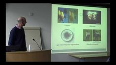 Maintaining vision throughout life: A lecture by Conor Murphy (RCSI/Royal Victoria Eye and Ear Hospital), hosted by the National Institute for Cellular Biotechnology (nicb.ie), Dublin City University. Date: March 2015 Dublin City, Biotechnology, Insight, University, March, Victoria, Eye, Videos, Community College