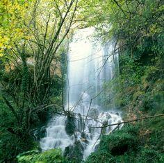 """CASCADA EN PRIMAVERA: El Nacedero del Río Urederra  es """"El Paraíso del Agua""""  Una Reserva Natural de Bosques  Naturaleza y Agua  *Ruta a las Cascadas de Baquedano: http://nacedero-rio-urederra.blogspot.com.es/p/ruta-cascadas-baquedano.html   *Web Nacedero Urederra:  http://nacedero-rio-urederra.blogspot.com   *Casas Rurales Nacedero Río Urederra: http://www.casaruralnavarra-ubasaurederra.com  *Restaurantes  Nacedero Urederra:  http://restaurantefaustina-nacederourederra.blogspot.com.es"""