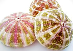 """4-4.5"""" Alfonso Sea Urchin-Beach Wedding Decor-Sea Urchin Bulk-Sea Life Craft Supplies-Alfonso Urchin-Sea Urchin Decor-Beach Wedding Favors"""