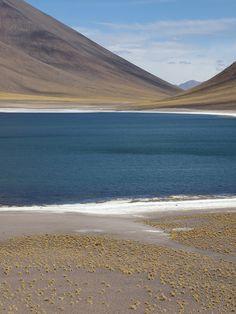 Chile_San Pedro De Atacama_Laguna Minique Where do we go from here? Ushuaia, Beautiful Sites, Beautiful Places, Chili, Ocean Beach, Wonders Of The World, South America, Kayaking, The Good Place