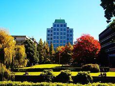 Otago University, Micro Building — Insiders Dunedin 30 Years, Empire State Building, Multi Story Building, University, World, Places, Travel, Viajes, Destinations