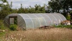 Polytunnels December, What to sow, plant and harvest from your polytunnel in December from Allotment Gardening Allotment Gardening, Hothouse, Garden Furniture, Houseplants, Harvest, December, Building, Diy, Ideas