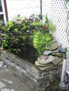 Aquaponics- at least I'd want the cinder block track to hold the tilapia.