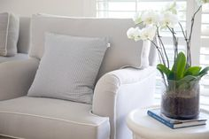 Beachwood-Occasional chairs #Sofas and chairs