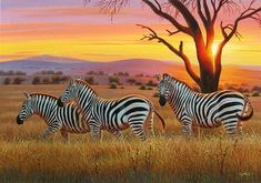 Home - Cynthie Fisher Art Wildlife Paintings, Wildlife Art, Animal Paintings, Animal Drawings, Africa Painting, Africa Art, Zebra Drawing, Wild Animals Photography, Tropical