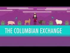 The Columbian Exchange: Crash Course World History #23 - What changes were wrought by contact between the Old World and the New World?  Provide specific examples to back up your answer please.