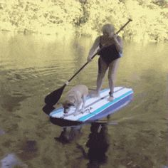 21 Best GIFs Of All Time Of The Week #179