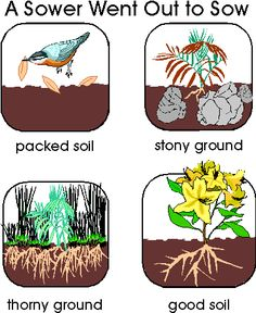 teaching the Parable of the Sower: what kind of dirt am I?