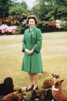 Her Royal Majesty and her many, many corgis - Finally, the number one powerful woman is Queen Elizabeth II! Not only has she been royalty all her life, but she also has also owned over thirty Welsh Corgis during her reign. Photo by Getty / Anwar Hussein God Save The Queen, Hm The Queen, Her Majesty The Queen, Queen Elizabeth Corgi, Facts About Queen Elizabeth, Princesa Elizabeth, Palais De Buckingham, Prinz Philip, Royals