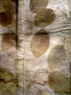 The Textile Blog: Creative Dyeing from India Flint