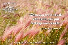 When you are in touch with spirit, you put feelings over results.  ~Deepak Chopra