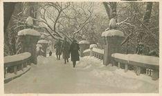 Bucharest, Snow, Outdoor, Outdoors, Outdoor Living, Garden, Eyes