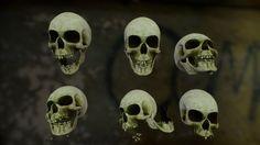 Skull Cranium Game Model in Other 3d Anatomy, Skull, Model, Scale Model, Models, Template, Skulls, Sugar Skull
