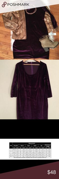 (Plus) Trendy Velvet Dress - BRAND NEW! Rich, stunning eggplant purple velvet dress.  Never worn, in brand new condition.  Velvet is so in this season - a must have for autumn/winter!  Such a stylish holiday party show stopper!  Measurements in photos; fabric stretches to allow sizing flexibility. (And yes, that amazing jacket that pairs so beautifully with it is also for sale in my closet BRAND NEW! 😍 Bundle and save!) Dresses