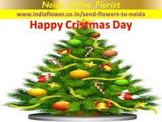 Happy Christmas Day, Christmas Tree, 24 7 Delivery, Online Florist, Gift Cake, Send Flowers, Beautiful Flowers, Balloons, Sweets