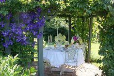 Carolyn Aiken traditional patio
