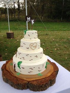 I love the cake on a tree stump idea!