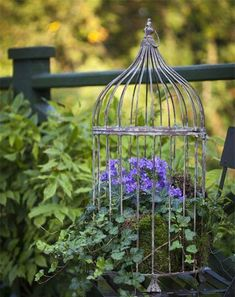 Birdcage with Flowers How to Create a Birdcage Flower Garden Balcony Garden Web is part of Birdcage planter - Utilize your vertical space well to create a birdcage with flowers and add colors through caged flowers in your garden Diy Planters, Hanging Planters, Garden Planters, Planter Ideas, Recycled Planters, Diy Hanging, Hanging Baskets, Beautiful Flower Arrangements, Beautiful Flowers