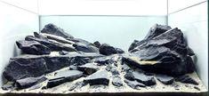 Turtle Aquarium, Aquarium Garden, Aquarium Landscape, Nano Aquarium, Betta, Tang Fish, Bearded Dragon Habitat, Fish Tank Design, Habitats