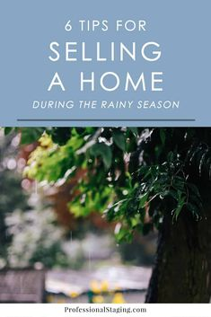 6 Tips for Selling a Home During the Rainy Season - MHM Professional Staging Home Staging Tips, Moving Day, Rainy Season, Selling Real Estate, Simple House, Real Estate Marketing, Seasons, Hunting, Events