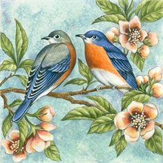 Two Bluebirds By Elena Vladykina