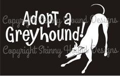 Adopt A Greyhound! decal