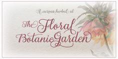 Gardeny Font http://www.myfonts.com/fonts/eurotypo/gardeny/
