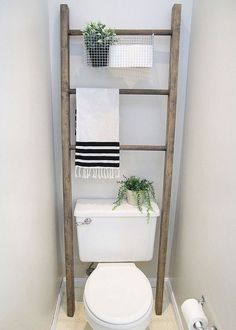 Storage Ladder Above Toilet