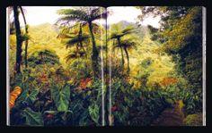 23_23bookscape.jpg (600×381)