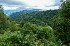 Driving through the Smoky Mountains is like nothing else! If you are looking for breathtaking views... this is where you should visit!