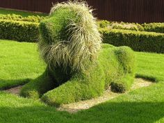 Cutest Topiary EVER!