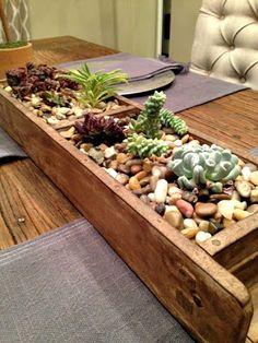 Urban Retreat Furniture: The Succulent Way to Decorate