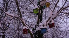 Birdhouse in Winter..