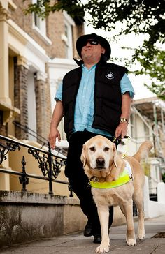 Guide dogs: Every hour, another person in the UK goes blind. When someone loses their sight, Guide Dogs makes sure they don't lose their freedom as well. Guide Dogs currently supports 4,600 guide dog partnerships