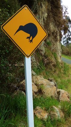 Kiwi Road Sign - NZ on Stewart Island - south of the South Island!