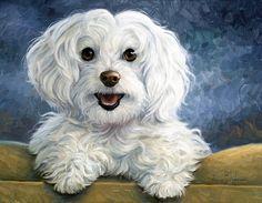 LUCIE BILODEAU ~ cute white dog