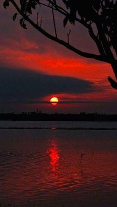 Sunrise at the Crooked Tree Wildlife Sanctuary in Belize ~ photo: Ben Forsyth Image Nature, All Nature, Amazing Nature, Beautiful World, Beautiful Places, Beautiful Pictures, Crooked Tree Wildlife Sanctuary, Amazing Sunsets, Foto Art