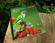 LEGO-based artist, author, and curator Mike Doyle (previously here and here) has collected another impressive setof LEGO masterpieces in his lastest book Beautiful LEGO: Wild!by No Starch Press, a book that explores natural wonders from undersea landscapes to a family of sea otters produced fr