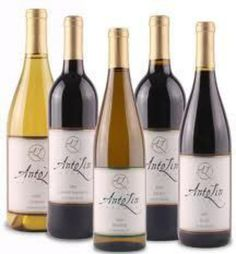 Wines from AntoLin Cellars Winery: Riesling, Viognier, Cabernet Sauvignon, Merlot, Syrah, Chardonnay, Carmenère and Malbec varieties from our 5-acre vineyard: Glacier Estates, and other select sites in the Yakima and Columbia Valleys.