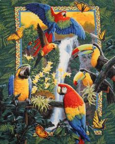 TropicaL Birds Parrots ButterfLies Cross Stitch Pattern***L@@K***$4.95 CLICK VISIT TO SEE PATTERN FORSALE
